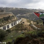 A Palestinian boy displays Palestinian flags above Road 60.