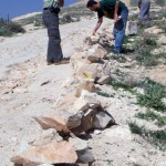 Palestinians build a wall near Jubbet Adh Dhib to prevent further land confiscation from an illegal settlement outpost.