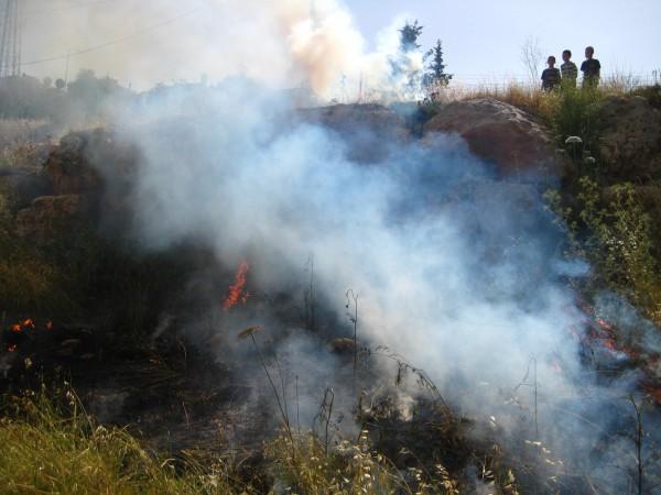 Israeli settler children overlook area of burned Palestinian land.