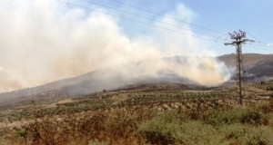 Settlers set fire to farmland in Burin.