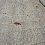 Blood left after a Palestinian boy was attacked by Israeli settlers