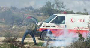 Israeli Occupation Forces gas Bil'in - Click here for more images
