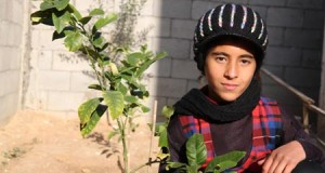Amal al-Samouni (11) sitting in front of her house in Zeitoun neighborhood (Photo: Palestinian Center for Human Rights)