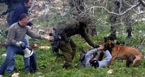 The jaws of Zionism locked - Click here for more photos