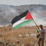 Protestor stands with Palestinian flag as tear gas moves across the land.