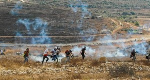People run away from tear gas shot by the army in Nabi Saleh.