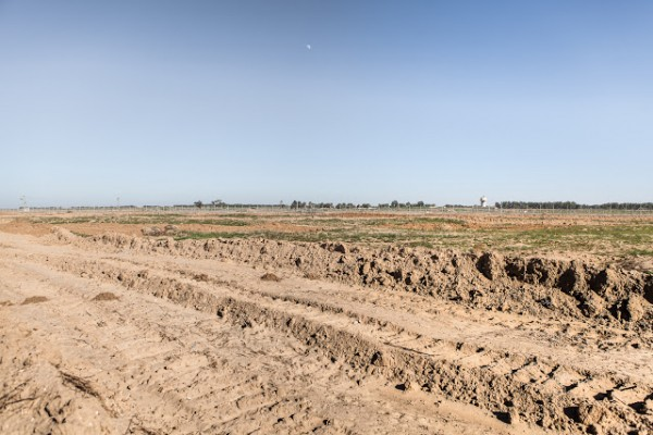 Damaged farmland near the border, photo by Desde Palestina