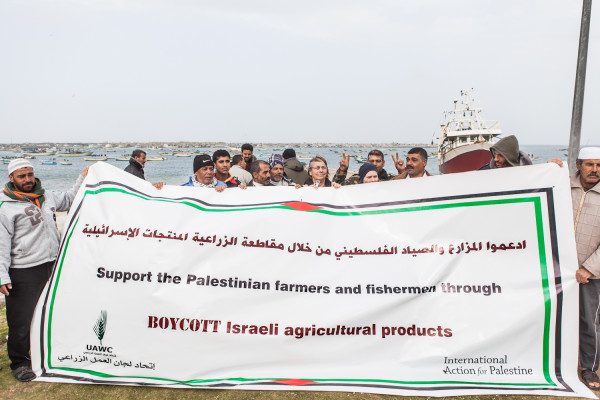 40 people held a rally at Gaza Port on Wednesday 6 February. Photo: Desde Palestine