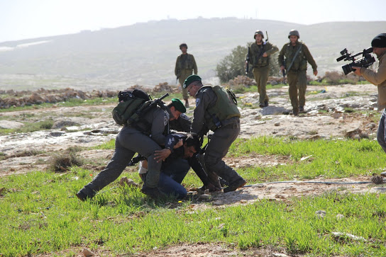 Israeli border police arresting a Palestinian activist (Photo: Beit Ommar Popular Movement)