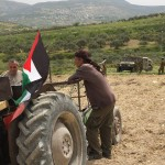 Farmers watched by Israeli Occupation Forces