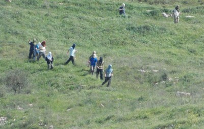 Yizhar settlers attacking farmers (Photo by IWPS)