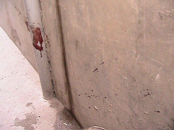 Blood on the streets of Al Fawwar camp