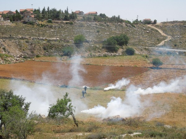 Protesters attacked with tear gas