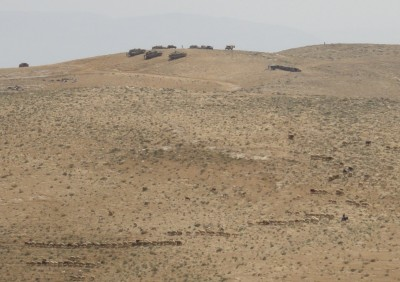 Tanks visible in very close proximity to Palestinian shepherd and sheep
