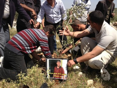 Planting trees in Qusin (Photo by ISM)