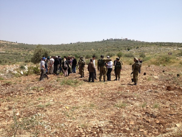 Israeli soldiers preventing villagers from plating olive trees on their lands (Photo ISM)