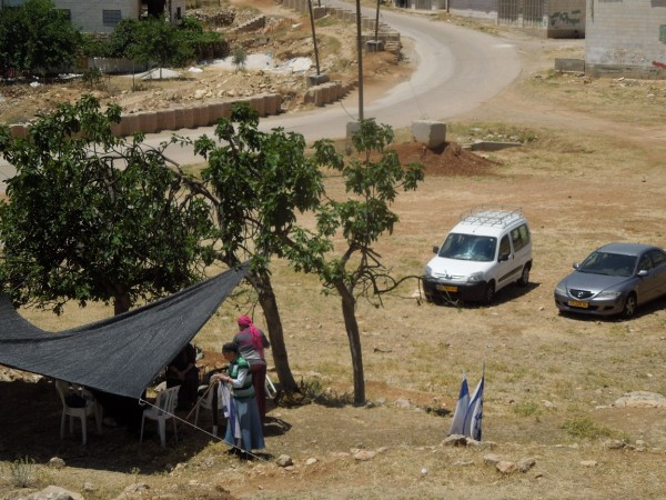 Settlers tent in the Palestinian olive groves (Photo by ISM)