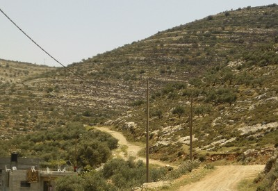 Abad and Fouzi's land on the mountainside by their houses (photo: ISM)