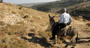 Bet Ayin settlement visible on the hill (Photo by: ISM)