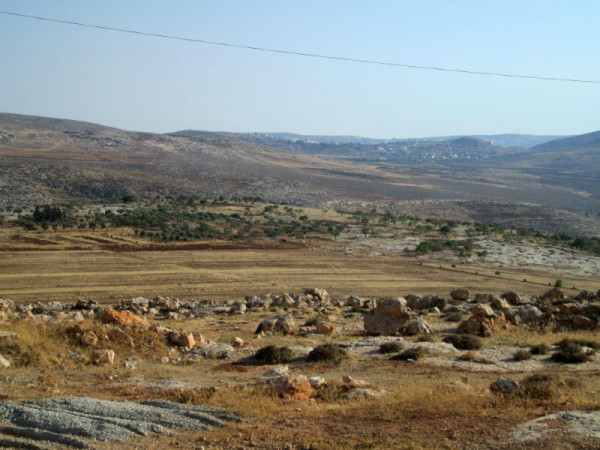 Duma's lanscape( Photo by IWPS)