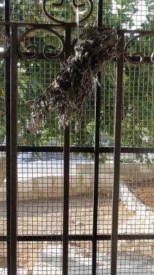 metal grates on Abu Osama's window (Photo by ISM)