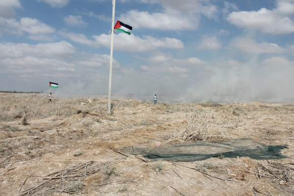 Two demonstrators stand in a field ignited by tear gas canisters fired by Israeli forces. (Photo by Joe Catron)
