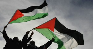 Take Action for Palestine!