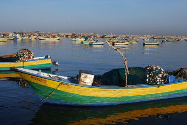 Small fishing boats, or hasakas, moored in the Gaza seaport. (Photo by Charlie Andreasson)