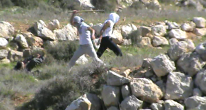 Settlers beating Israeli Activist (Photo by Operation Dove)