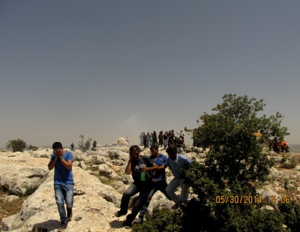 Israeli army attacking unarmed civilians with sound grenades and tear gas (photo by International Women's Peace Service).
