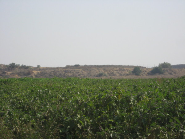 The beginning of the buffer zone in Beit Hanoun in the occupied Gaza Strip. Photo by Corporate Watch, November 2013