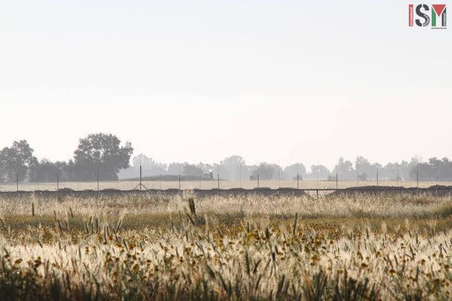 khuzaa farmland wm