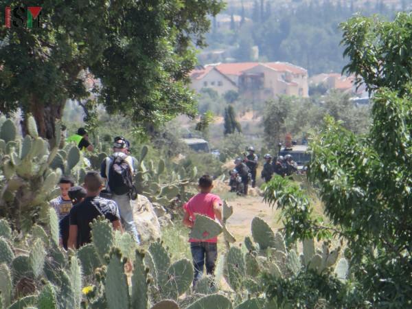 Demonstrators facing the Israeli army