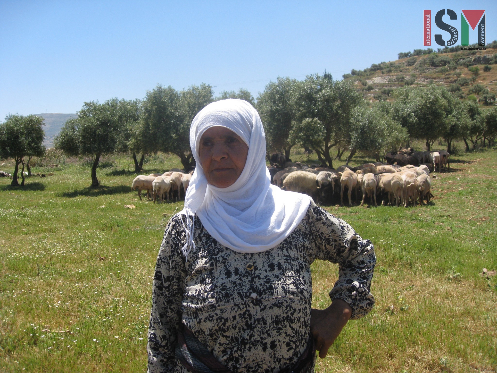 Mahfouda - shepherd from Salem who's worked her land for 40 years