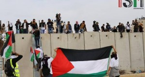 ISM volunteers raising Palestinian flag in front of the Apartheid wall.