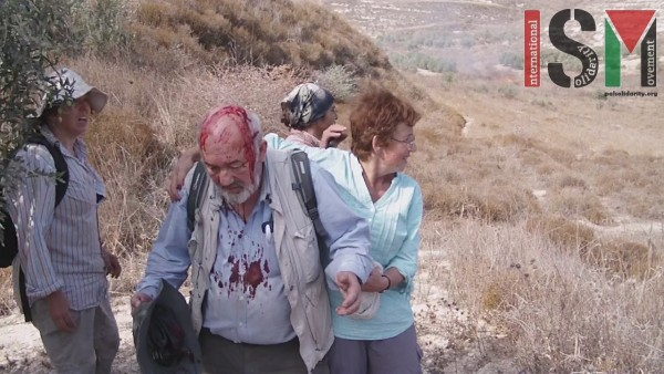 International human rights observer David Amos attacked by settlers