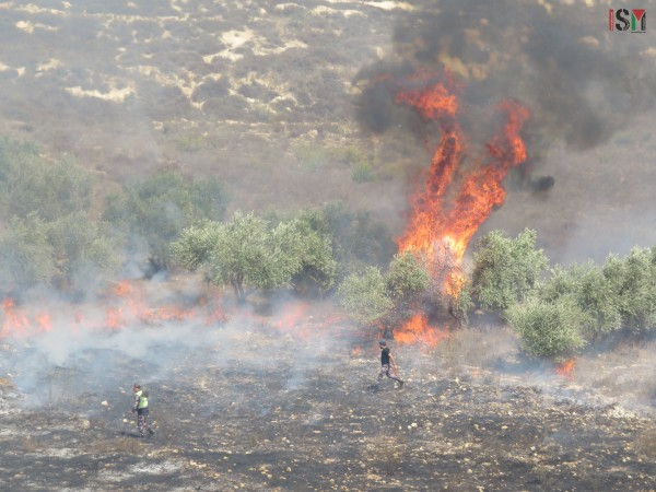 Palestinian civil workers attempt to put out fires while fire truck prohibited entry