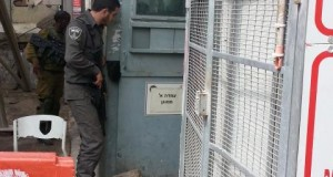 Israeli forces detained a young Palestinian man in a small metal box and trapped him inside by placing a stone against the door.