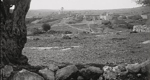 Village Zakariyya, evacuated violently during the Nakba, circa 1926.
