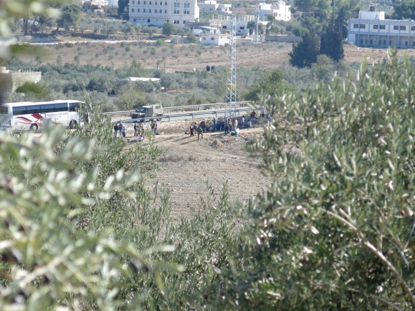 A large group of volunteers arriving to another farm to support olive harvest. Photo credit ISM