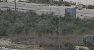 The Israeli forces came to the family's field