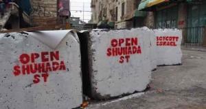 Anti-occupation murals on military blockade
