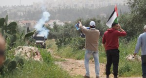 The Israeli forces and peaceful protesters