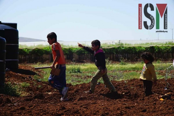 Young children playing whilst helping in the planting of the olive trees