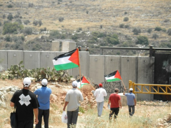 Photo from demonstration in Ni'lin. Photo credit: Palestine Solidarity Campaign