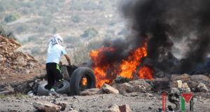Palestinian youth rolls tyres onto the fire lit at protest in Kafr Qaddum