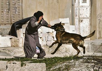 Palestinian activist attacked by Israeli occupation forces security dog
