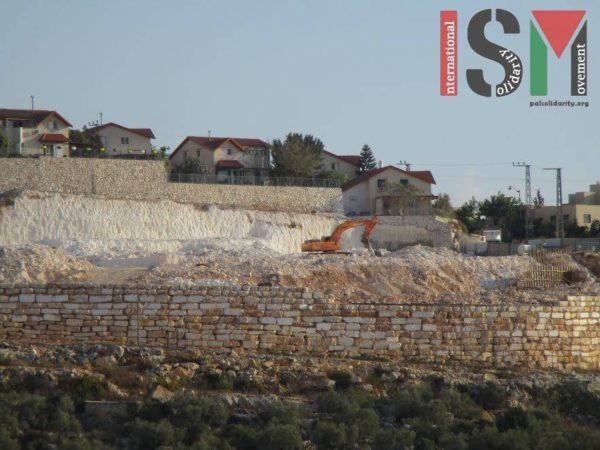 Bulldozer working in Pedu'el illegal settlement