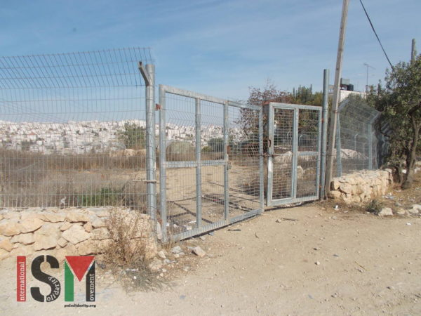 Gate locking access to the Abu Haykal family land, now deemed an 'archaelogical site' by Israeli forces