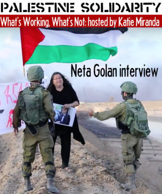 Palestine: What's Working, What's Not